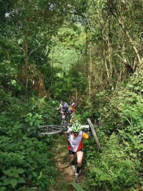 Bike Carry section through stinging nettle bushes